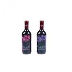 Cure-dents dans une bouteille de vin