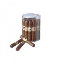 Boîte de 20 cigares en chocolat