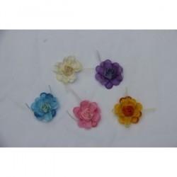 Fleur parfaite pour décorer Pic